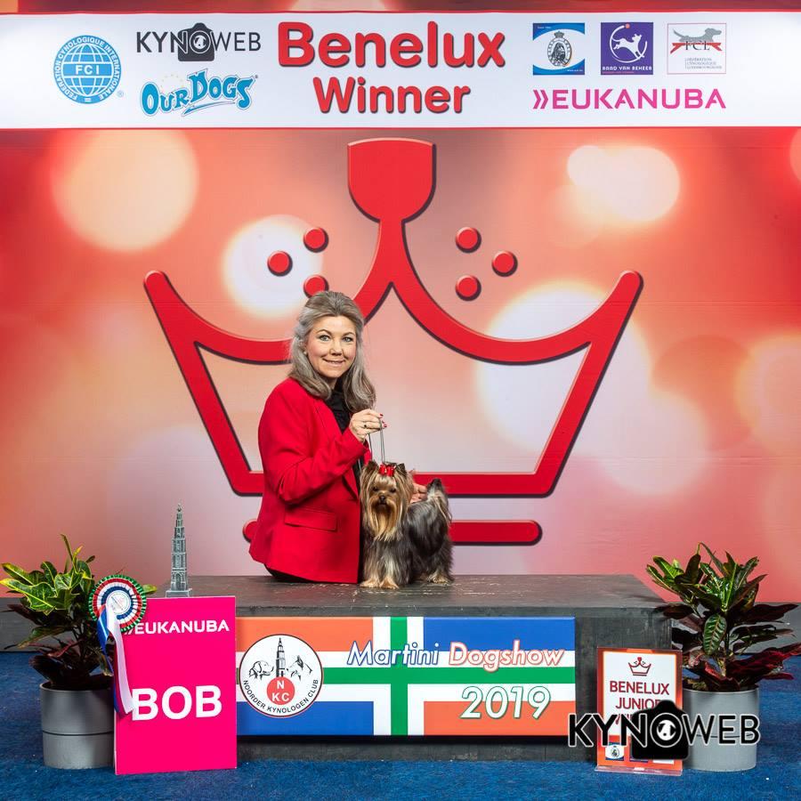 Mooie Resultaten Voor Josien En Priscilla Zweerink-Ubbink Op Benelux Winner In Groningen !